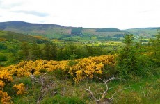 Dublin Mountains Way named one of the most scenic walks in the world