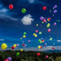Sure, they look pretty - but charity balloon releases are killing birds and dolphins