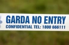 Man (61) killed in Kildare crash after van overturned