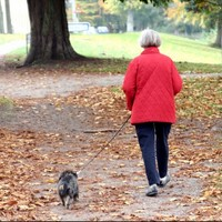 An elderly woman squeezed a man's testicles after he hit her when she was walking her dog