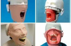 So dentists' training dummies are the most horrifying things on the planet