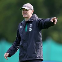 Schmidt avoids Ireland cuts but World Cup squad crunch time comes soon