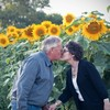 Husband makes heartwarming tribute to late wife with seven kilometres of sunflowers