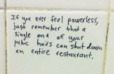10 of the finest motivational quotes ever to be found on a toilet wall