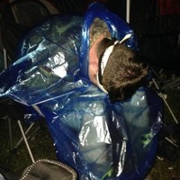 This horrifying Twitter account details everything you shouldn't do at Electric Picnic
