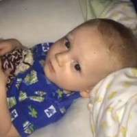 11-month-old dies when grandparents leave him in car for two hours