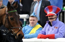 The essential DOs and DON'Ts for every horse racing virgin