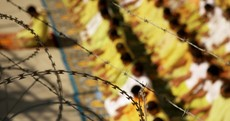 Thousands of Iraqis face torture, says Amnesty report