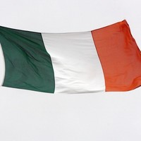 3,200 primary schools are going to get a new Irish flag - and Proclamation