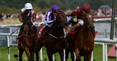 Massive controversy as Aidan O'Brien wins another St Leger at Doncaster