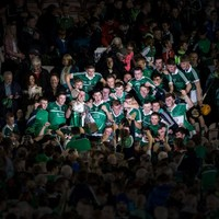 Sensational Limerick are U21 champions after Wexford rout