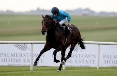 Michael Owen's classic-winning horse put down after Curragh incident