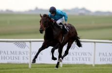 Michael Owen's classic-winning horse put down after Curragh incident