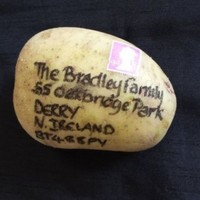 This stamped and addressed potato was successfully delivered to Ireland from England