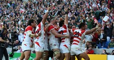 Watch: The shock and ecstacy as Japan players celebrate taking Springbok scalp