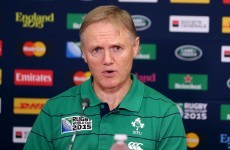 'We want the game to keep going' - Ireland's Schmidt on TMO use at RWC
