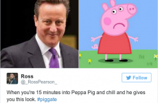 13 people who took the whole #piggate affair and ran with it