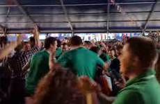 Did you go as nuts watching Japan as these Irish fans in Cardiff?