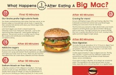 This infographic claims to show what happens to your body after a Big Mac