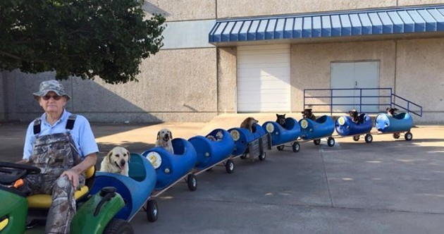 The internet has fallen in love with this old man who built a 'dog train' for rescued pups
