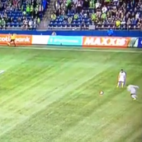 Is this free-kick from MLS striker Robbie Earnshaw the worst you've ever seen?