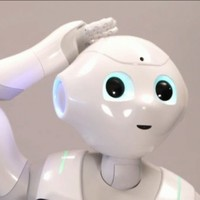 Robot owners told not to have sex with them