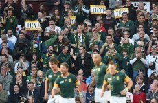 Pietersen hat-trick gets Springboks back on track with bonus point win over Samoa