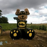 Look at what this farm in Meath has created from some bales of hay