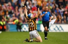 Kilkenny and Galway lead the way as 2015 hurling Allstar nominations revealed