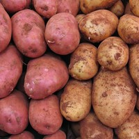 QUIZ: Test your knowledge of Ireland's favourite crop