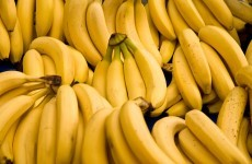 'Success' story for officers as €10m in cocaine found with pureed bananas