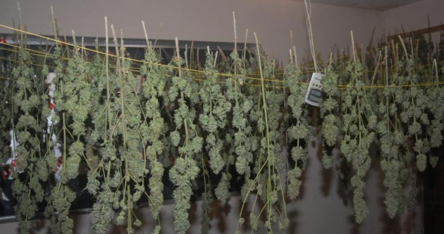 Man charged after this grow house was discovered in Kildare