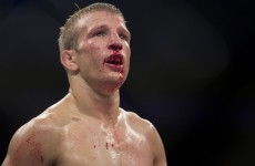 McGregor calls another one right as Dillashaw parts ways with Faber's Team Alpha Male