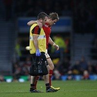 More injury heartache for Wales as Liam Williams is ruled out of the rest of the World Cup