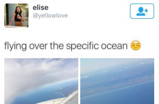 The 17 tweets that failed the hardest in 2015
