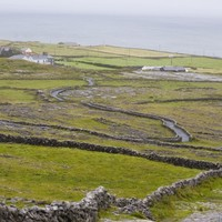Embattled Aer Arann service isn't going anywhere for another year