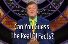 Can You Guess the Real QI Facts?