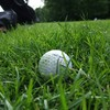 66-year-old woman helps foil raid while waiting for golf lesson