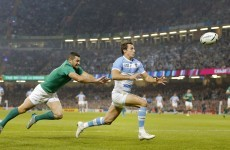 'Understudies not quite up to the task' - the international media reaction to Ireland's loss