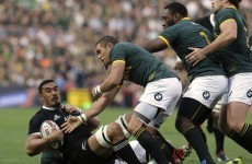 Current All Blacks 'probably the best team to ever play the game' -- Springbok boss Meyer