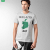 Coach Kavanagh issues ultimatum to Reebok over 'incredibly insensitive' Ireland t-shirts