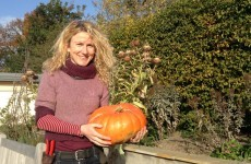 Carving a jack-o'-lantern? This woman reckons the tradition borders on sacrilege
