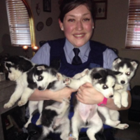 Gardaí returned this bundle of stolen puppies to its rightful owner