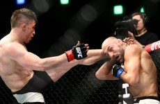 Antrim's Norman Parke wins UFC Dublin grudge match against Reza Madadi