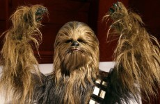 "Man arrested in Chewbacca costume, can't pay fine as his ""intergalactic bank has no branch on earth"""