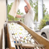 This man claims to have made $15 million from finding golf balls... but is it possible?