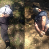 Father and son fugitives caught as decomposing body found in their hideout