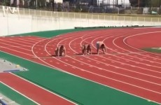 Take a break and watch three sumo wrestlers running the 100 metres*