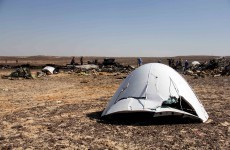 Metrojet chief: Sinai plane crash was not caused by technical fault