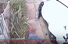 Policemen in South Africa arrested after allegedly appearing on video shooting suspect dead